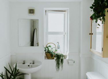 HandymanHunter.uk Plumbing Toilet and Urinal Unblocking